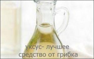 yksys-ot-gribka-nogtey