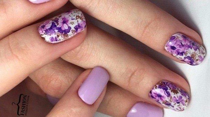 слайдер с фиолетовыми цветами